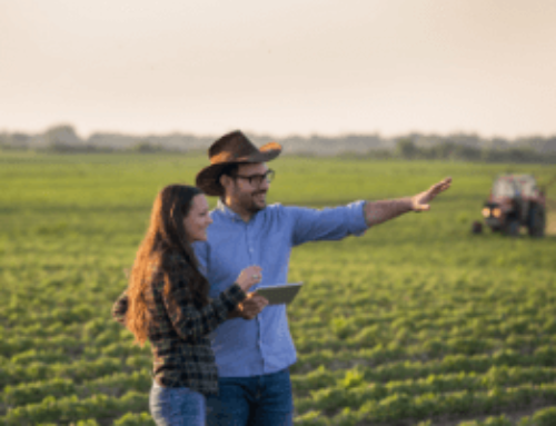 Pivoting Your Business: Farmers are Coming Up with New Ways to Diversify their Operations